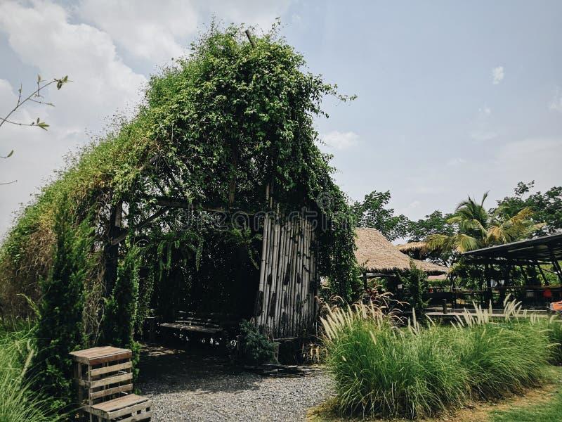 家庭树和庭院 免版税库存图片