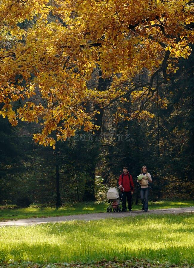家庭步行在森林里 库存照片