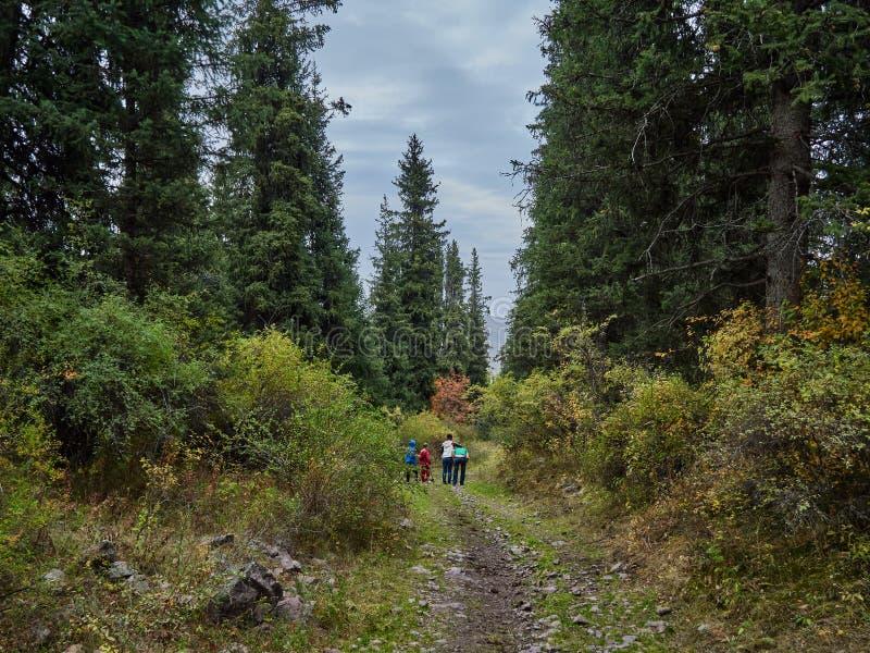 家庭步行在森林 图库摄影