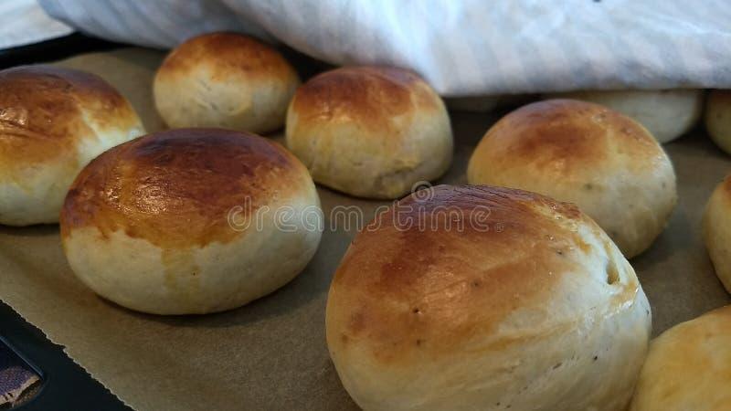 家庭焙制的小圆面包 免版税库存图片