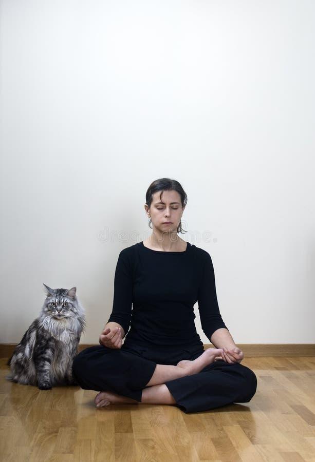 家庭瑜伽 库存照片