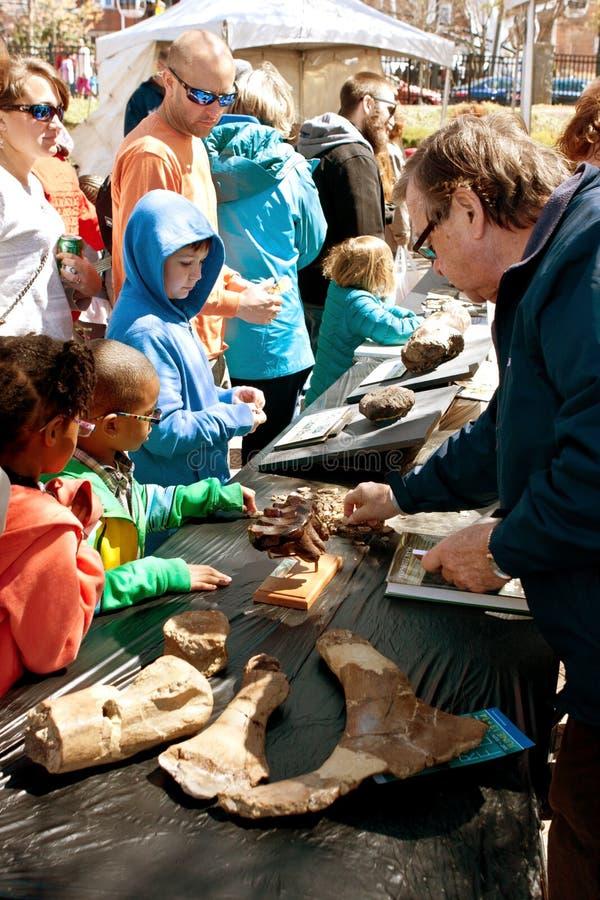 家庭看看在显示的化石在亚特兰大科学展览 免版税库存图片