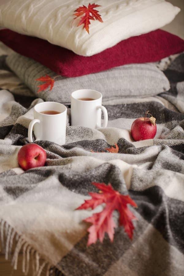家庭舒适和温暖在秋天时间 灰色格子花呢披肩、被编织的枕头、茶和秋天红色枫叶 免版税库存照片
