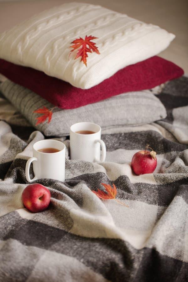 家庭舒适和温暖在秋天时间 灰色格子花呢披肩、被编织的枕头、茶和秋天红色枫叶 图库摄影