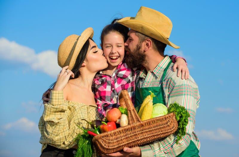 家庭花匠篮子收获蓝天背景 家庭从事园艺 家庭农厂概念 父母和女儿农夫 免版税库存图片