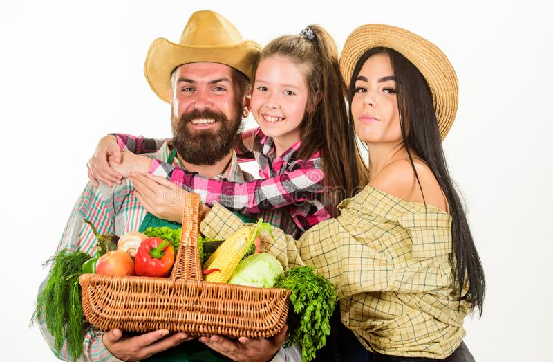 家庭花匠篮子收获被隔绝的白色背景 家庭从事园艺 父母和女儿农夫庆祝 免版税图库摄影