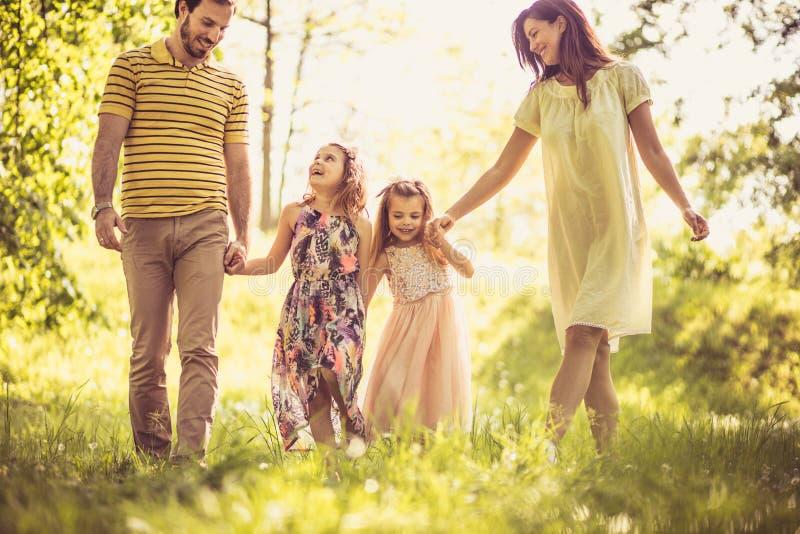 家庭获得乐趣在春日 库存图片