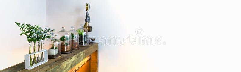 家庭装饰:室内植物、玻璃容器瓶小庭院,老木架子和花在葡萄酒玻璃瓶在白色墙壁上与 库存图片