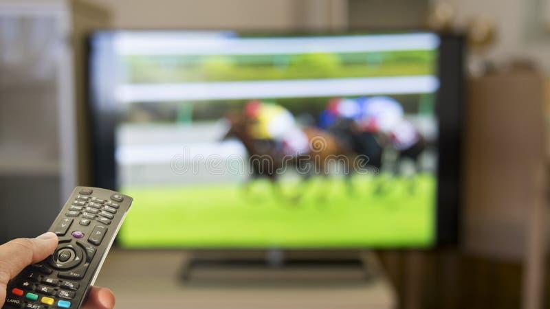 家庭赛马观看在电视 免版税库存照片