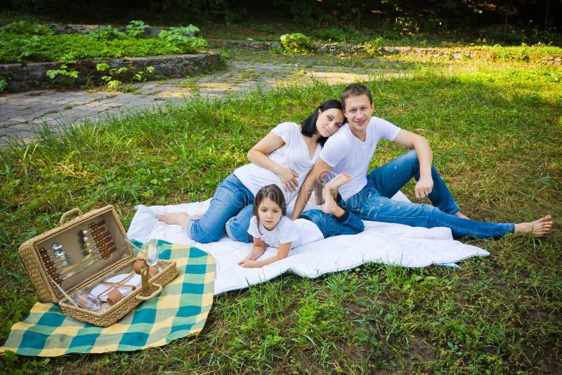家庭野餐在公园 库存图片