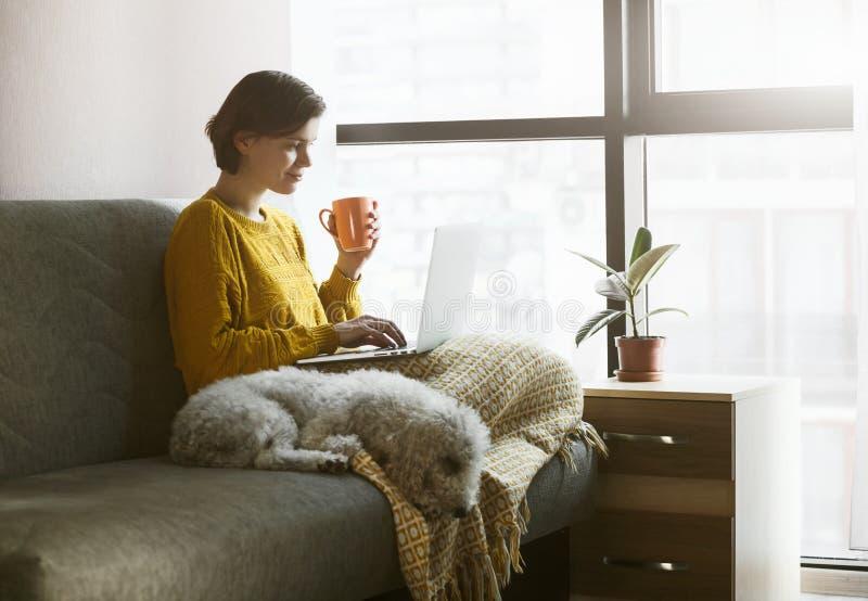 家庭隔离处使用笔记本电脑的妇女 免版税图库摄影