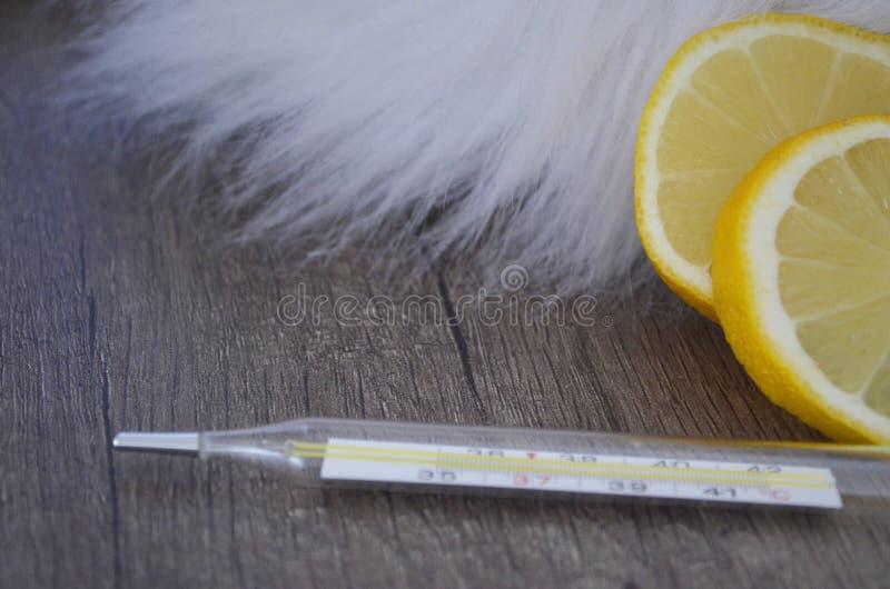 家庭grippe补救 库存图片