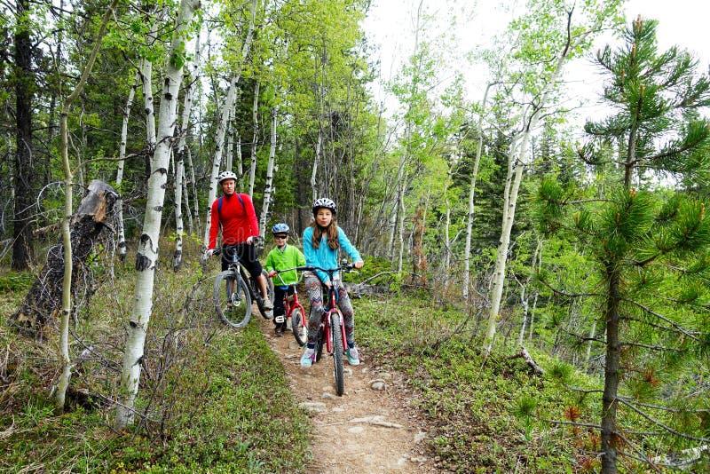家庭mountainbike旅行 库存照片