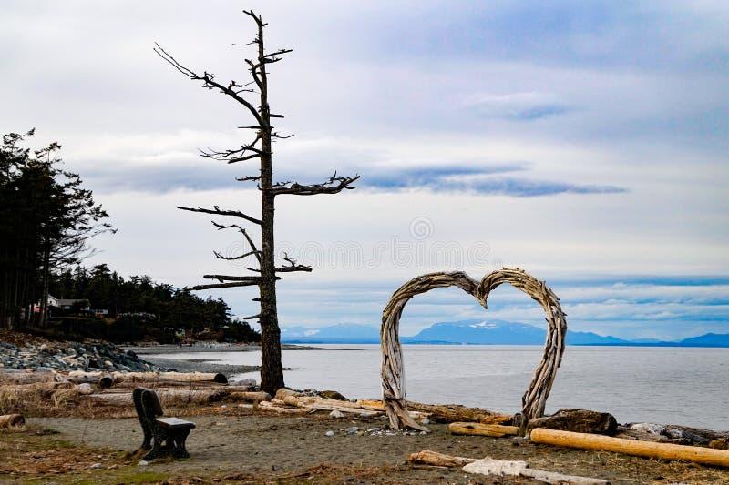 家族使省公园, Comox ~Vancouver海岛靠岸, BC,加拿大 库存照片