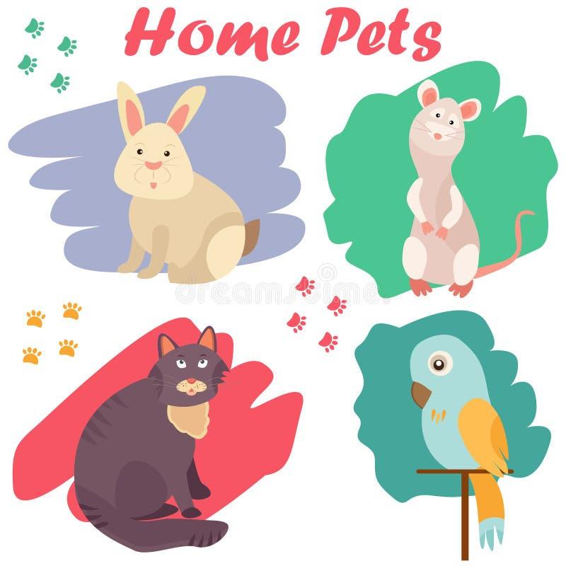 家畜猫、鹦鹉、鼠和兔子的明亮的图象 能为宠物店,诊所,宠物食品广告使用 库存例证