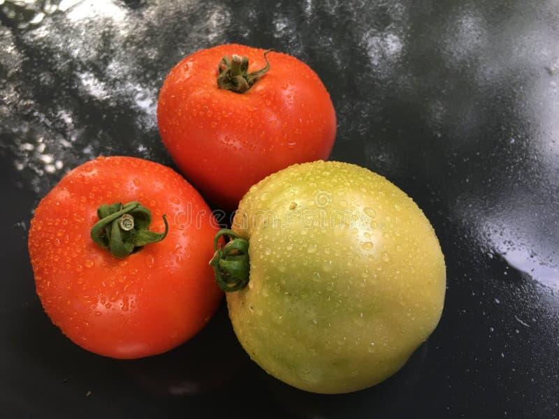 家种西红柿3 库存照片