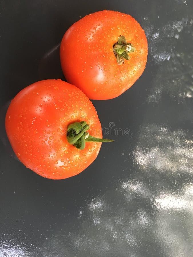 家种西红柿4 免版税图库摄影