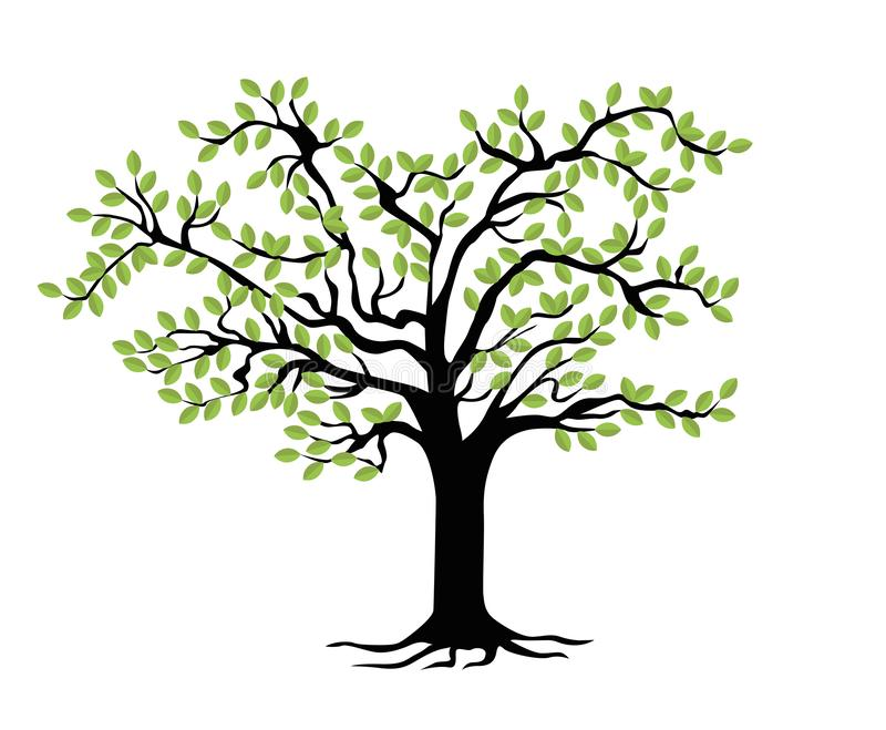 家谱模板 家系树 库存例证