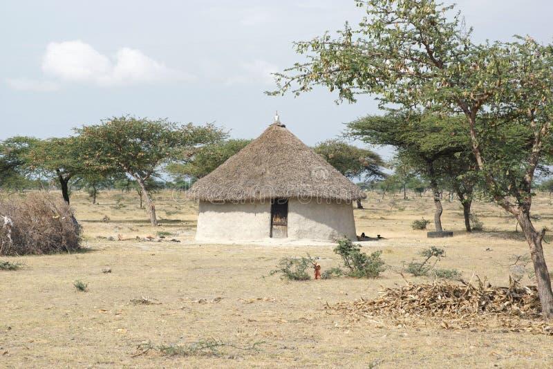 家,东非大裂谷,埃塞俄比亚,非洲 免版税图库摄影