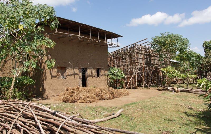 家,东非大裂谷,埃塞俄比亚,非洲 库存照片