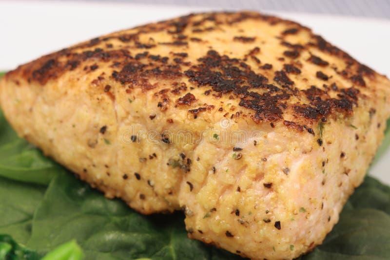 容易的美食被盘问做三文鱼 免版税库存图片
