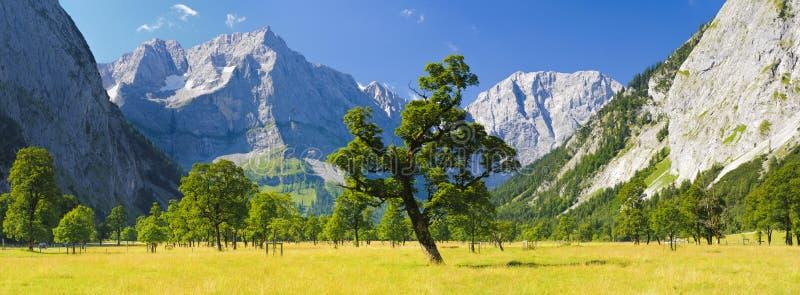 宽全景风景在奥地利 免版税库存图片