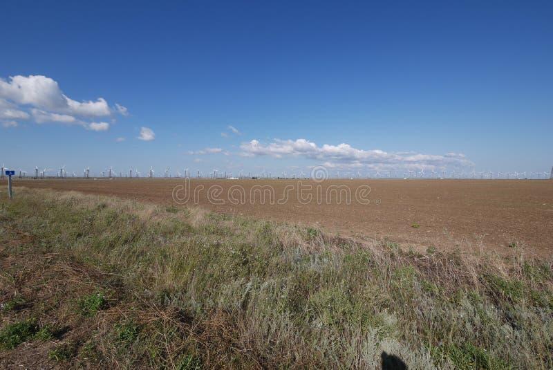 宽广的不尽的领域在高风车背景的蓝天下  免版税库存照片