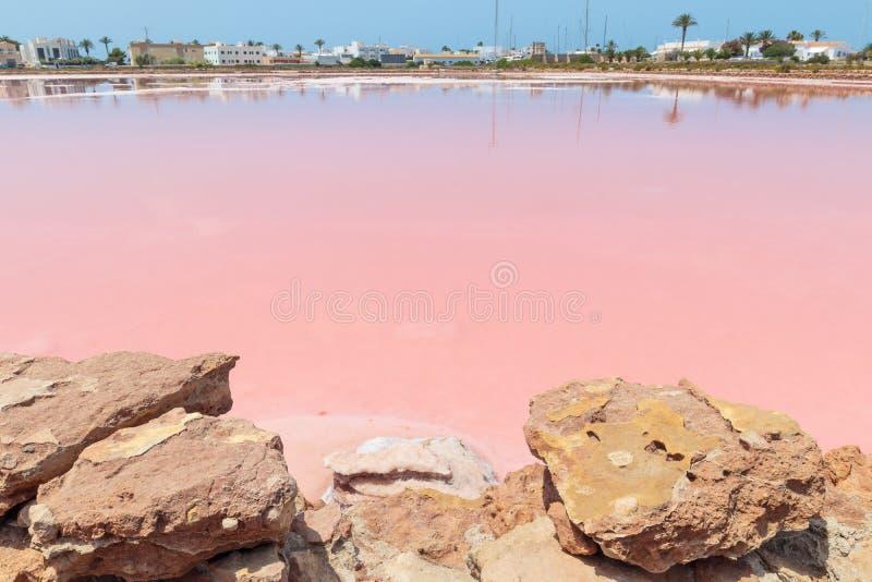 宽广的桃红色色盐在福门特拉岛西班牙 库存照片