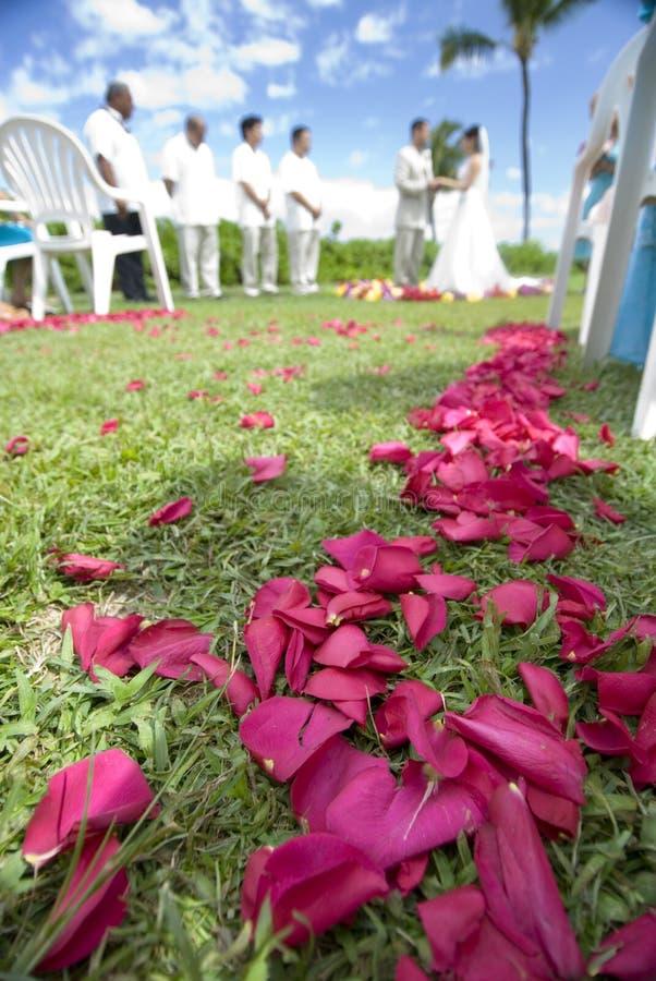 宽异乎寻常的热带婚礼 免版税图库摄影