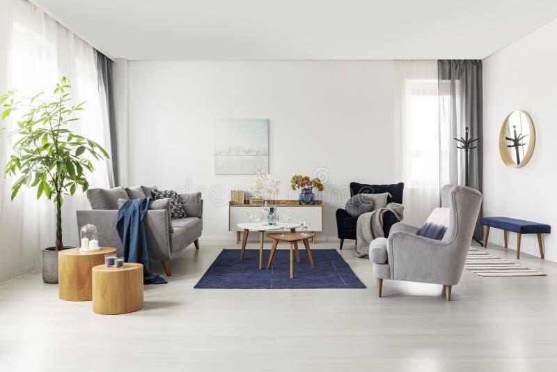 宽敞灰色和水军蓝色斯堪的纳维亚客厅内部 图库摄影