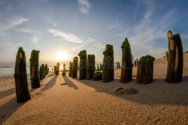 宽fisheye在绿色青苔盖的射击了垂直的石头在一个沙滩在一好日子 免版税库存照片