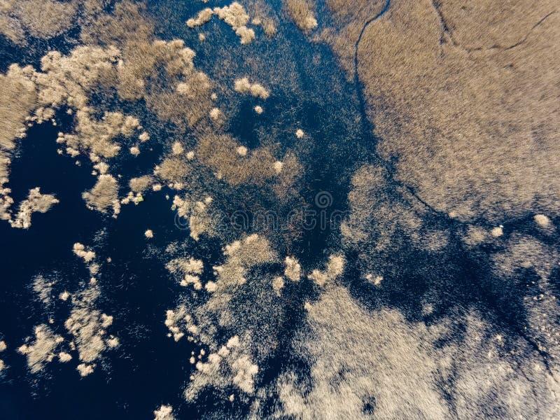 寄生虫图象 乡区鸟瞰图与领域和森林a的 库存照片