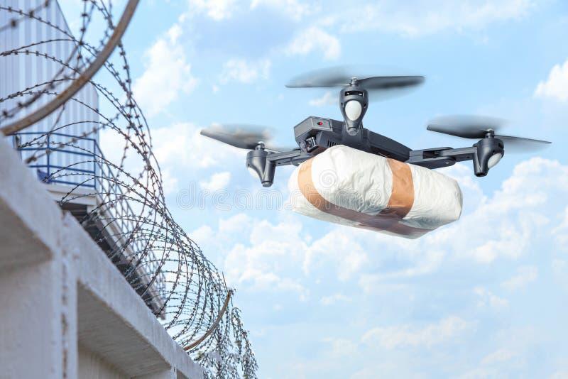 寄生虫横跨与走私的天空飞行 寄生虫运输横跨违反法律的边界的禁止的物品 ??  免版税库存照片
