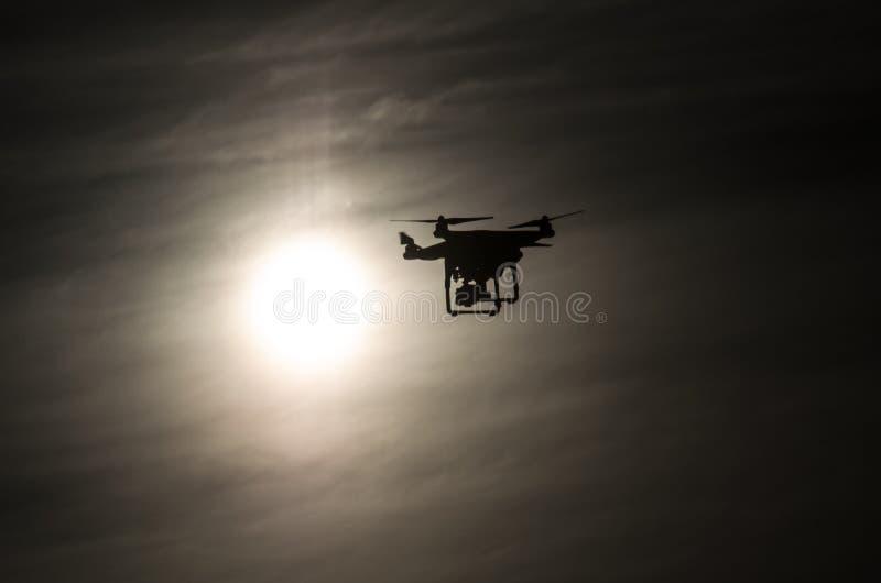 寄生虫飞行到太阳里 库存图片