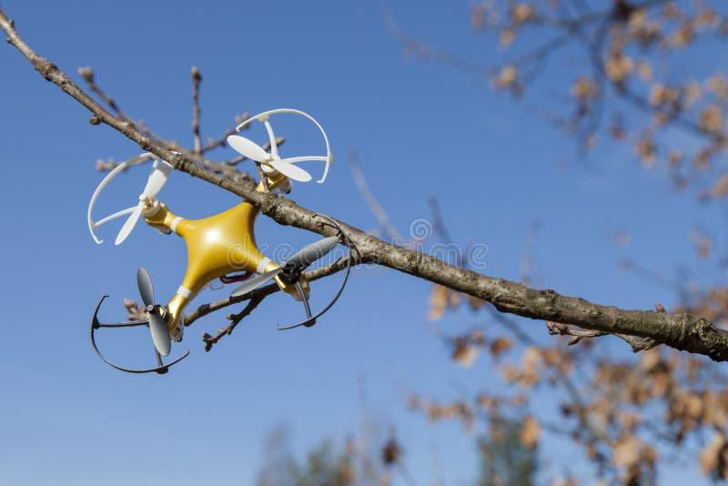 寄生虫quadcopter在树碰撞了在城市公园 免版税图库摄影