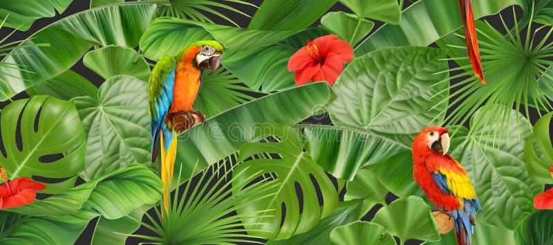 密林叶子和鹦鹉,无缝的样式 r 库存例证