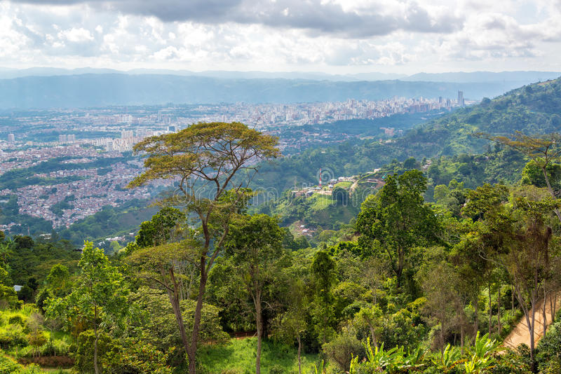 密林和都市风景 免版税库存图片