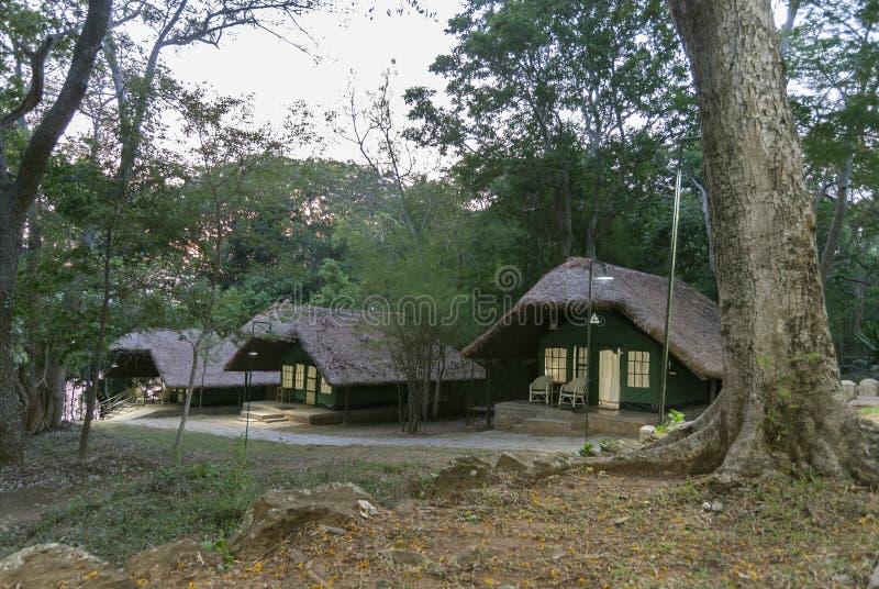 密林小屋和手段的在Kabini,卡纳塔克邦,印度的森林阵营 免版税库存图片