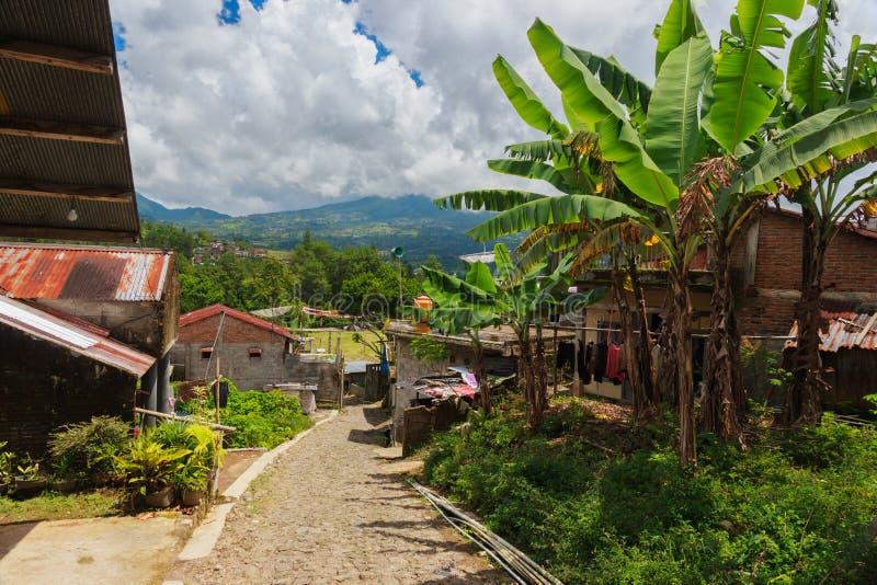 密林山的亚洲村庄 免版税库存照片