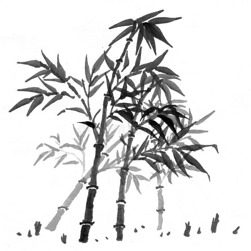 Download 密林风景 库存照片. 图片 包括有 束缚的, beautifuler, 旅游业, 光芒, 灌木, 异乎寻常 - 59112410