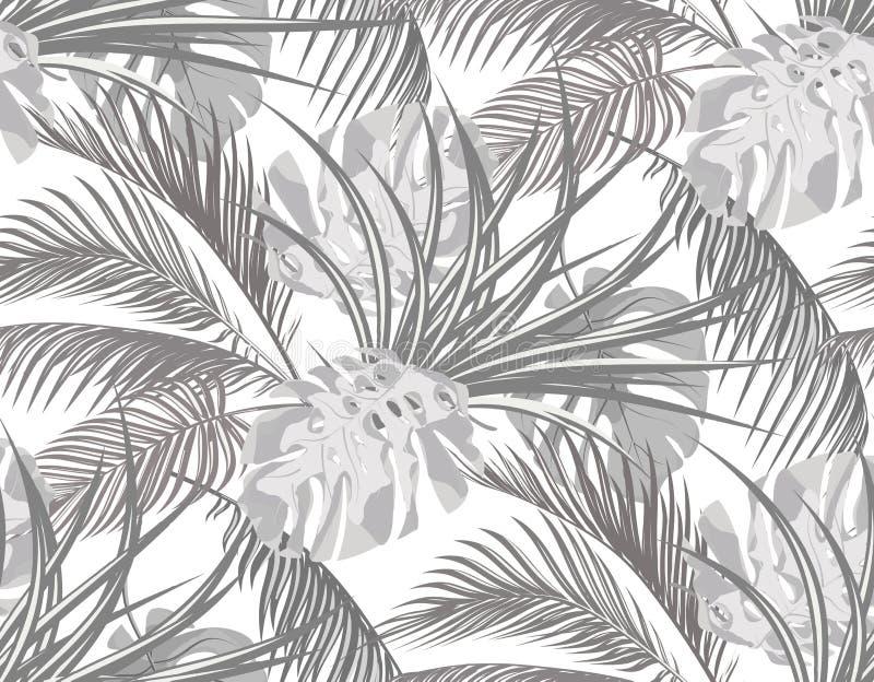 密林 与热带棕榈树,妖怪,龙舌兰叶子的黑白背景  无缝 查出在白色 皇族释放例证