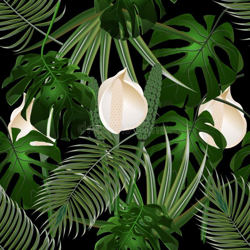 密林 热带棕榈叶丛林  三片花和妖怪叶子 无缝花卉的模式 查出在黑色 向量例证