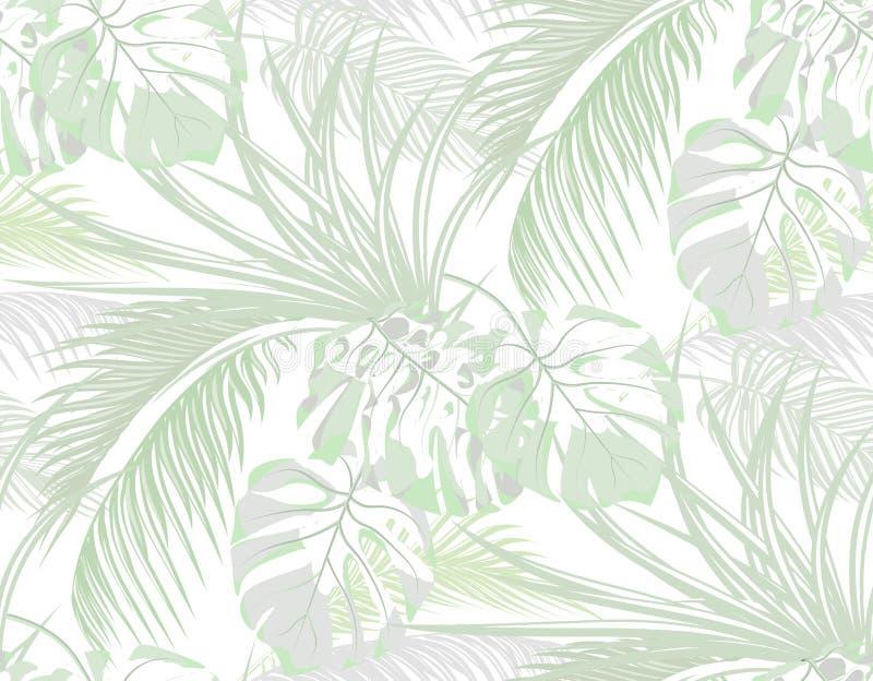 密林 热带棕榈叶子背景,妖怪,龙舌兰 无缝 查出在白色 例证 向量例证