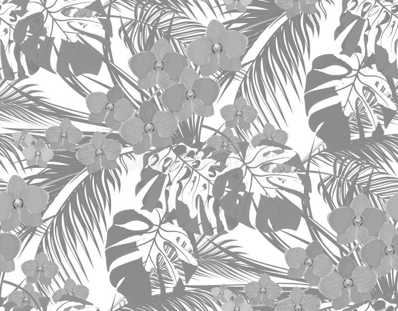 密林 热带棕榈树、monstera、龙舌兰和兰花黑白叶子  露水,雨下落  无缝 皇族释放例证