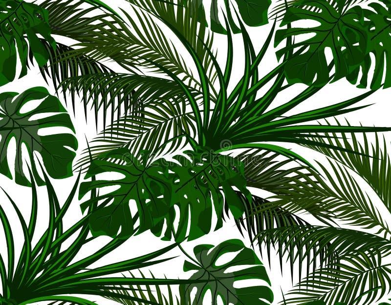 密林 热带棕榈树绿色叶子  妖怪,龙舌兰 无缝 背景查出的白色 例证 向量例证