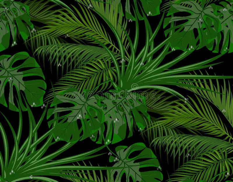 密林 热带棕榈树,妖怪,龙舌兰绿色叶子  露水,雨下落  无缝 背景查出的白色 皇族释放例证