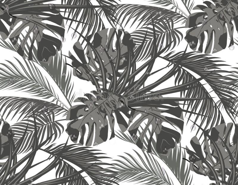 密林 热带棕榈树,妖怪,龙舌兰黑白叶子  无缝 背景查出的白色 皇族释放例证