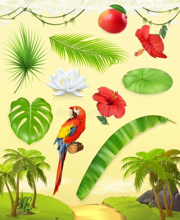 密林 种植热带 纸板颜色图标图标设置了标签三向量 库存例证