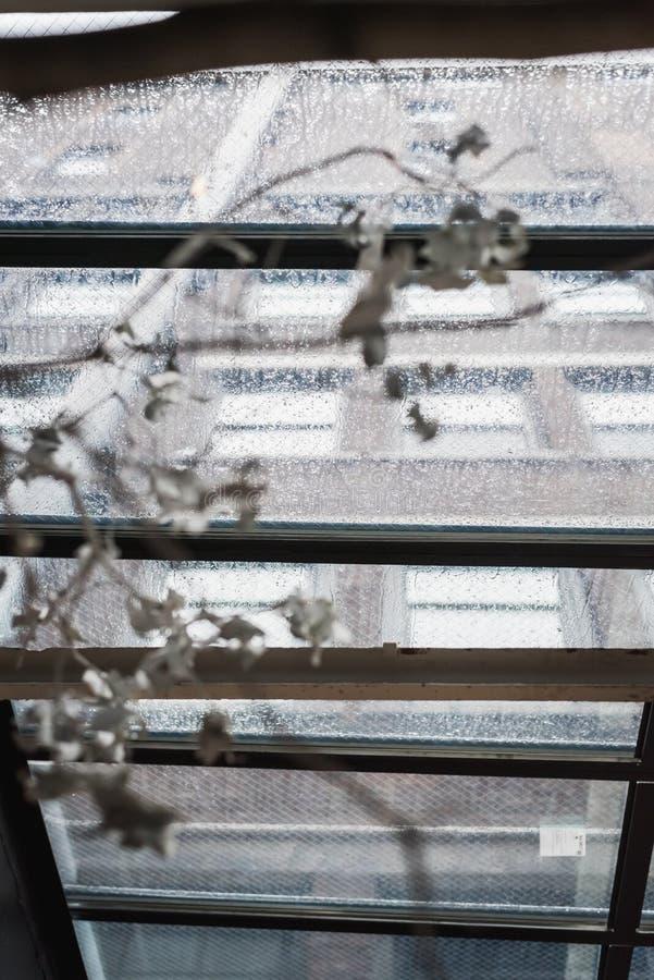 富启示性的下雨天在纽约大厦的玻璃屋顶下 免版税库存照片