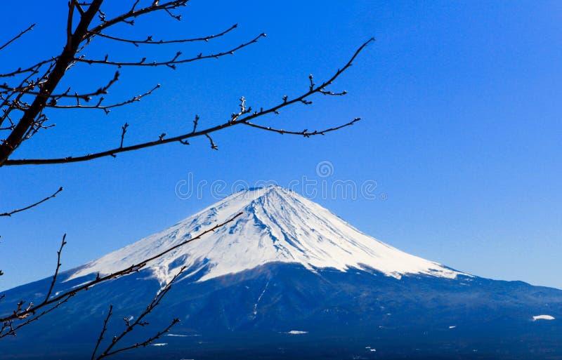 富士圣在冬天,日本 免版税库存照片